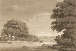 A view of Richmond Hill from Twickenham Meadows 18b